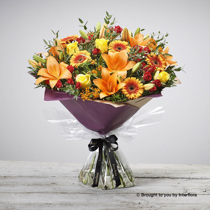 Golden Glory Hand-tied (extra large size)