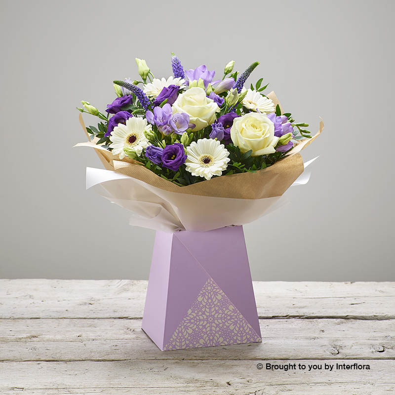 Parma Violet New Baby Gift Box (plus size)